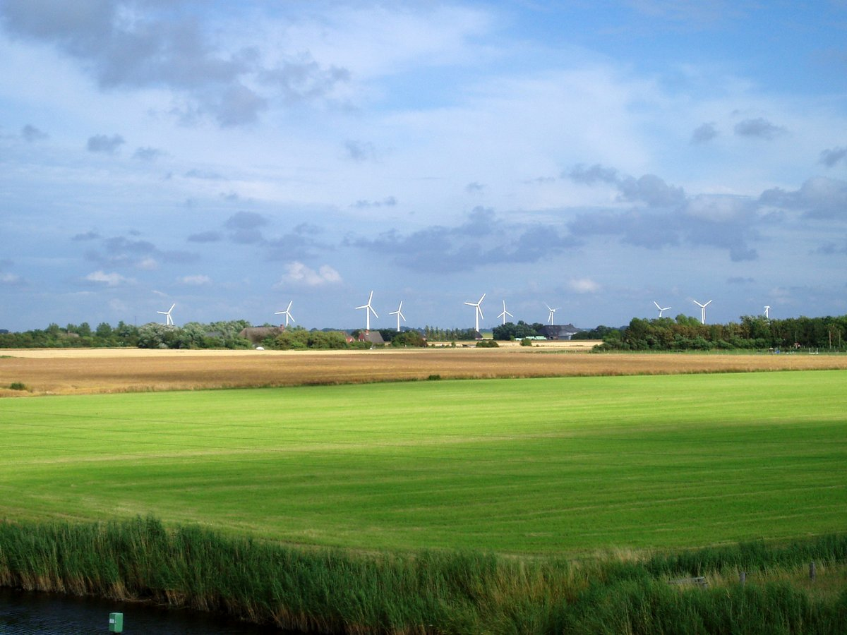 Landleben Sankt Peter-Ording: Landausflug auf der Halbinsel Eiderstedt